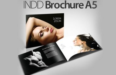 INDD Brochure